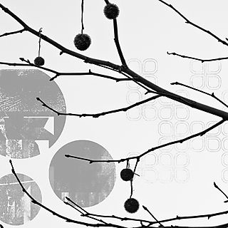 Treepods
